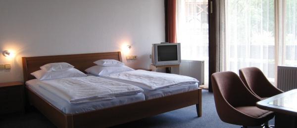 Apartment Susnik #1