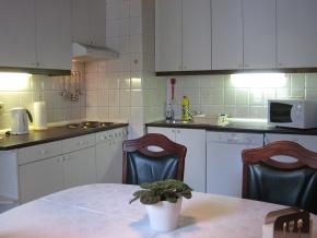 Apartment Susnik #1 - Photo #4