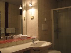 Apartment Susnik #1 - Photo #5